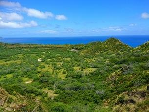 オアフ島の草原と青空の写真素材 [FYI03406850]