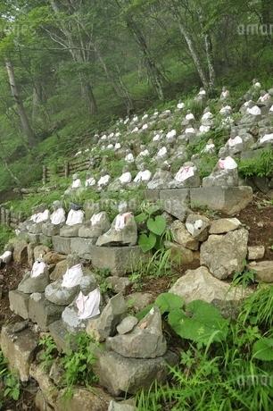 西桂町の八十八大師の写真素材 [FYI03406900]