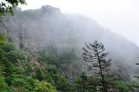 煙る屏風岩の写真素材 [FYI03406994]