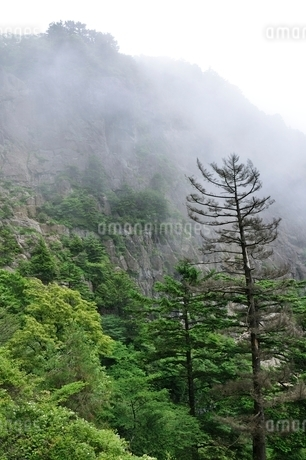 煙る屏風岩の写真素材 [FYI03406995]