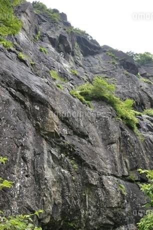 開運山 屏風岩の絶壁の写真素材 [FYI03406998]