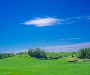北海道 自然 風景 牧草地と青空の写真素材 [FYI03407168]