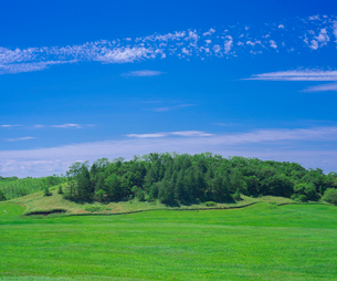 北海道 自然 風景 牧草地と青空の写真素材 [FYI03407170]