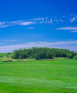 北海道 自然 風景 牧草地と青空の写真素材 [FYI03407171]