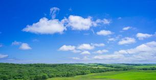 北海道 自然 風景 パノラマ 牧草地と青空の写真素材 [FYI03407194]