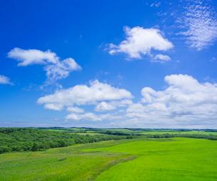 北海道 自然 風景 牧草地と青空の写真素材 [FYI03407200]