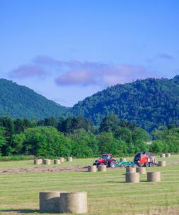 北海道 自然 風景 牧草地の写真素材 [FYI03407222]