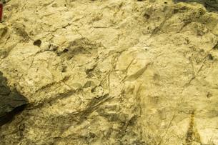 金鉱石の写真素材 [FYI03407309]