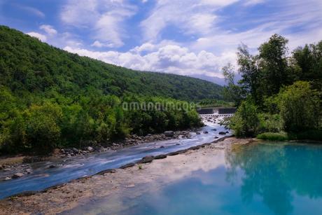 青い池 日本 北海道 美瑛町の写真素材 [FYI03407361]