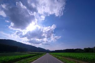 大雪山国立公園 日本 北海道 上川郡の写真素材 [FYI03407370]