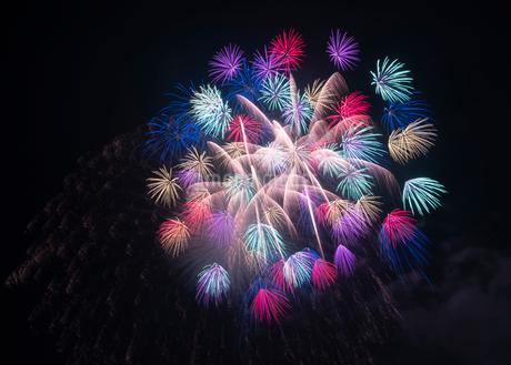 片貝の花火 日本 新潟県 小千谷市の写真素材 [FYI03407379]