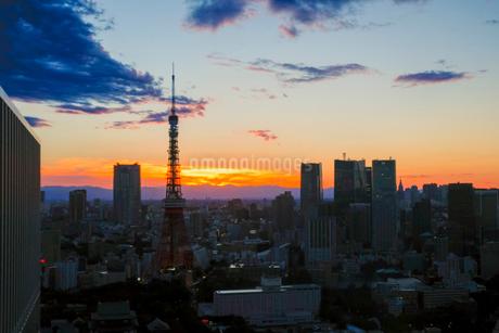 世界貿易センタービルからの眺め 日本 東京都 港区の写真素材 [FYI03407382]