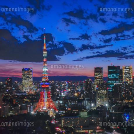 世界貿易センタービルからの眺め 日本 東京都 港区の写真素材 [FYI03407383]