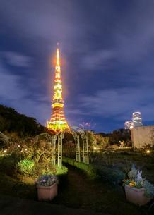 東京タワー 日本 東京都 港区の写真素材 [FYI03407397]