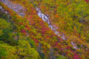 駒ケ岳 日本 長野県 駒ヶ根市の写真素材 [FYI03407399]