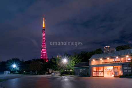 東京タワー 日本 東京都 港区の写真素材 [FYI03407400]