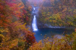 法体の滝 日本 秋田県 由利本荘市の写真素材 [FYI03407409]