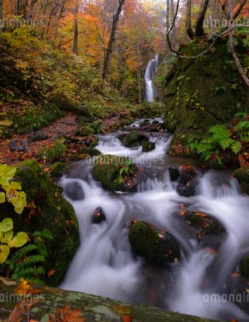 雲井の滝 日本 青森県 十和田市の写真素材 [FYI03407412]
