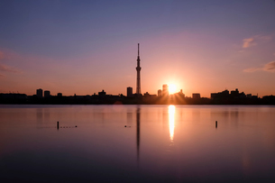 スカイツリーと夕焼け日本 東京都 葛飾区の写真素材 [FYI03407426]