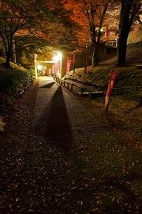上田城址公園 日本 長野県 上田市の写真素材 [FYI03407500]