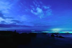 大洗磯前神社の神磯の鳥居 日本 茨城県 大洗町の写真素材 [FYI03407501]