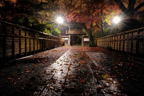 小江戸川越 日本 埼玉県 川越市の写真素材 [FYI03407506]