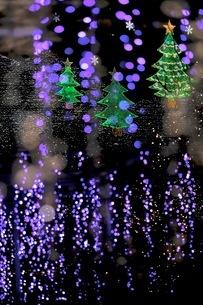足利フラワーパーク 日本 栃木県 足利市の写真素材 [FYI03407560]