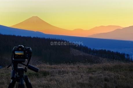 霧ヶ峰 富士見台から望む富士山 日本 長野県 諏訪市の写真素材 [FYI03407579]