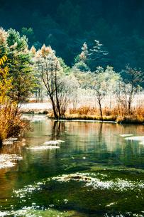 上高地霧氷の田代池の写真素材 [FYI03407584]