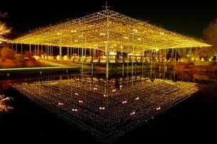 足利フラワーパーク 日本 栃木県 足利市の写真素材 [FYI03407586]