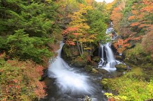奥日光 竜頭の滝の写真素材 [FYI03407846]