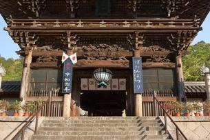 5月 ボタン祭りの長谷寺の写真素材 [FYI03407879]