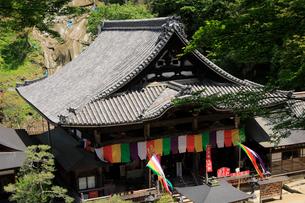 5月 岡寺の本堂の写真素材 [FYI03407900]