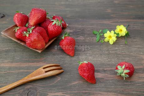 苺の写真素材 [FYI03408086]