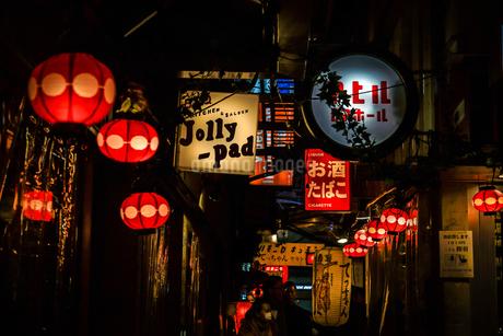 吉祥寺・ハーモニカ横町の写真素材 [FYI03408311]