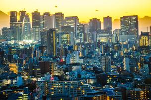 文京シビックセンターからの夕景(新宿方面)の写真素材 [FYI03408355]