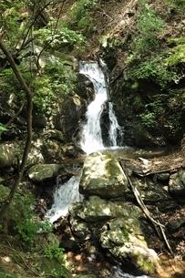 滝子山 三丈の滝の写真素材 [FYI03408645]