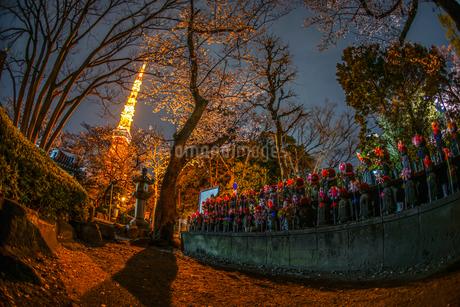 東京タワーと桜と地蔵の写真素材 [FYI03408659]