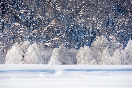 冬の寒い日の朝の写真素材 [FYI03408790]