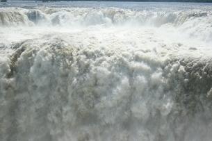 アルゼンチン側のイグアスの滝の写真素材 [FYI03409070]