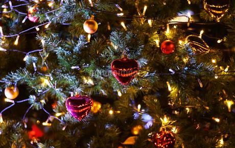 クリスマスツリーの飾りの写真素材 [FYI03409180]