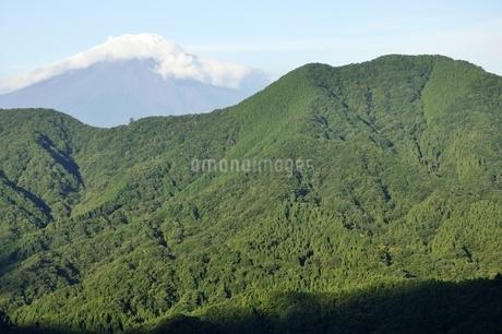 夏の富士山と鳥ノ胸山の写真素材 [FYI03409274]