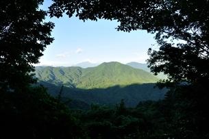 森の額縁からのぞく富士山の写真素材 [FYI03409276]