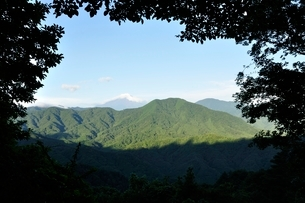森の額縁からのぞく富士山の写真素材 [FYI03409277]