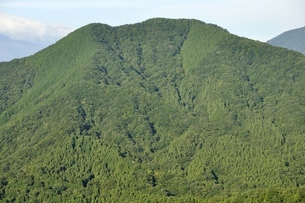 加入道山より緑の鳥ノ胸山の写真素材 [FYI03409280]