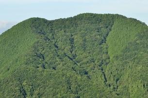 夏色の鳥ノ胸山の写真素材 [FYI03409283]