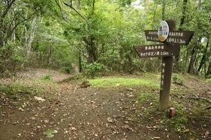西丹沢を通る東海自然歩道の写真素材 [FYI03409303]