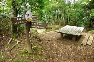 西丹沢を通る東海自然歩道の写真素材 [FYI03409309]