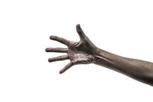手を開くの写真素材 [FYI03409324]