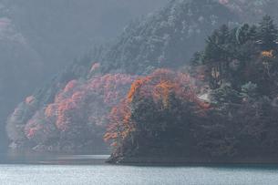 奥多摩湖畔の紅葉の写真素材 [FYI03409338]